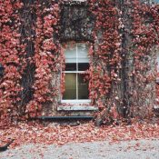 How James Hardie Siding Protects Your Home from Incoming Bugs This Fall and Winter